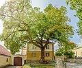 Linde Gumpoldskirchen 9086 Mercator 6.jpg
