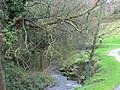 Little Dargle River in northern Churchtown (geograph 3546705).jpg