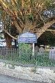 Llandygi - Eglwys Sant Tegai - St Tegai's Church, Llandygai, Gwynedd, Wales 02.jpg