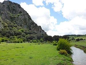 Llanos del Republicano - P1230163.jpg