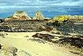 Long Shank - geograph.org.uk - 478105.jpg