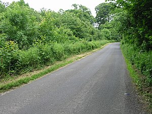English: Looking SE along road to Densole It i...