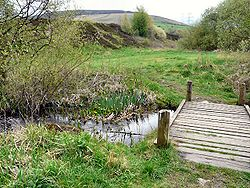 Looking down a grassy valley with a wooden bridge over a small stream in the foreground.
