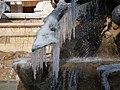 Lyon 1er - Place des Terreaux - Fontaine Bartholdi - Après la neige et le gel - Détail sur un sabot.jpg
