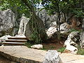 Major Stone Forest western section 07.JPG