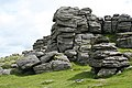 Manaton, Hound Tor - close up - geograph.org.uk - 861422.jpg