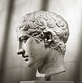 Marble head of a youth MET DP107601.jpg