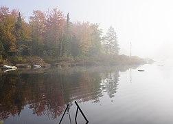 Marshfield Pond October 2021 009.jpg