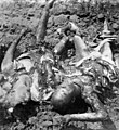 Mass grave in Malang, July 1947 Bersiap Killings Chinese killed and burned by Indonesian soldiers (TNI).jpg