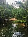 Massies Creek.jpg