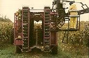 Mechanical Grape Harvester2.JPG