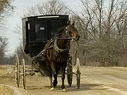Mennonite Horse and Carriage