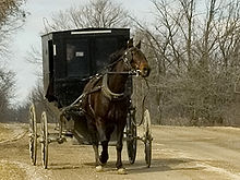 Mennonite and carriage publ.jpg