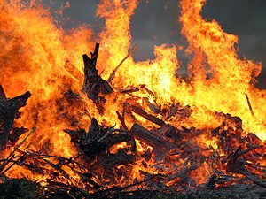 English: Midsummer festival bonfire closeup (M...