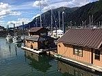 Mike Pusich Douglas Harbor 6499.jpg