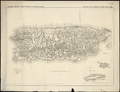 Military Map, Island of Puerto Rico WDL11326.png