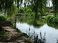 Mill pond, Sutton Poyntz - geograph.org.uk - 1230704.jpg