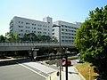 Minatojimanakamachi - panoramio (22).jpg