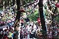Misa a la virgen de Guadalupe en la Sierra que lleva su nombre. - panoramio.jpg