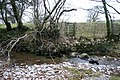 Missing Footbridge over Croasdale Beck - geograph.org.uk - 90798.jpg