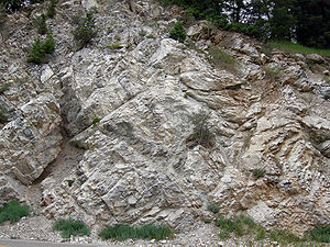 Metamorphic rock - Mississippian marble in Big Cottonwood Canyon, Wasatch Mountains, Utah.