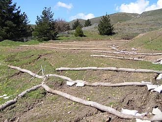 Soil conservation - Erosion barriers on disturbed slope, Marin County, California