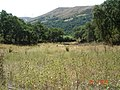 Mogadouro - RIBAS de CIMA - panoramio.jpg