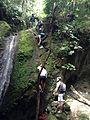 "Momento para escalar en la ruta ""Pitingos"" en Buga.JPG"