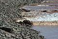 Moncton Tidal Bore detail.JPG