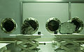 Moon rocks at Johnson Space Center.jpg