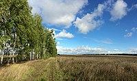 Mordovia-field-near-zarubkino-11-september-2015.jpg