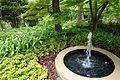 Morris Arboretum - DSC00331.JPG