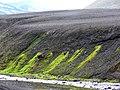 Moss (Iceland) 03.jpg