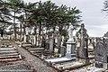 Mount Jerome Cemetery - (8371822738).jpg