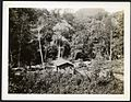 Mr. Lewis's camp on Rio Chiriqui Viejo, Panama at elevation of about 6000 feet. (22279788004).jpg