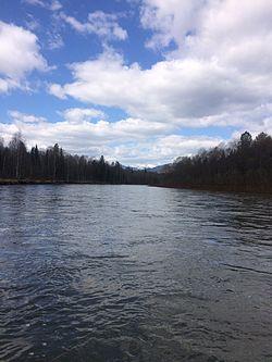 Mras-su River, Russia, Kemerovo Oblast, May 2016 2.jpg