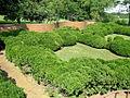 Mt. Harmon, gardens (21415186670).jpg