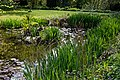 Myddelton House, Enfield, London - lake north corner.jpg