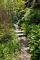 Myddelton House garden, Enfield, London ~ Lakeside path and steps 01.jpg