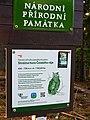 Národní přírodní památka Kozákov (02).jpg