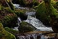 Nähe Reichenbach - panoramio (2).jpg