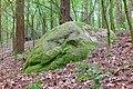 ND WL 00009 Wanderblock, östlich des Botenbergs bei Schätzendorf, Gemeinde Egestorf, Landkreis Harburg, Niedersachsen.jpg