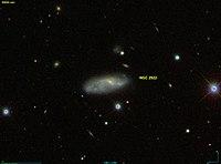 NGC 2922 SDSS.jpg