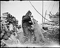 "NPRA1794. Roald Amundsen mater isbjørnungen ""Marie"" - Roald Amundsen feeding the polar bear ""Marie"" (29362931942).jpg"