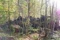 NSG Steinbruch Holzmühle (140).jpg