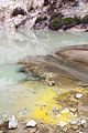 NZ100415 Waiotapu 01.jpg