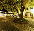 Nacht in Santa Cruz, Madeira. 04.jpg