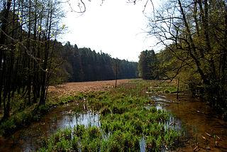 Tuchola Landscape Park