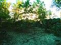 Nainville-les-roches - escalade bloc.jpg