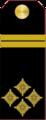 Narednik-Vodnik II klase 1908-1945.png